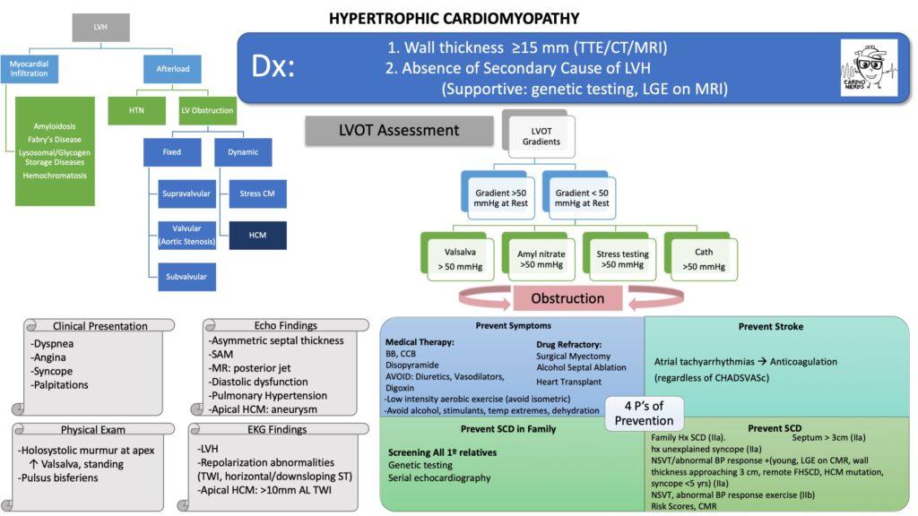 Hypertrophic Cardiomyopathy Schematic by Carine Hamo, MD